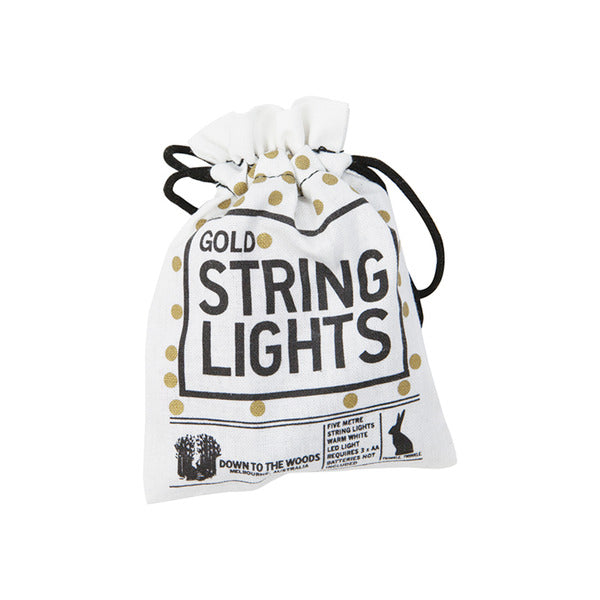 String Light Batteries 5M