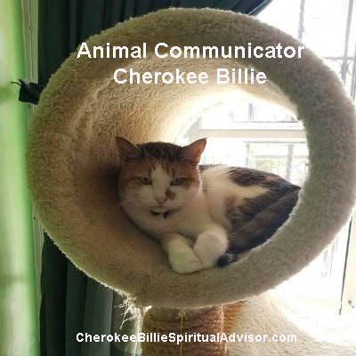 Animal Communicator Cherokee Billie
