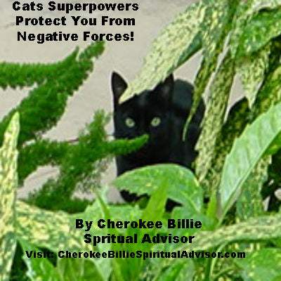 Cats Superpowers Protect You From Negative Forces!