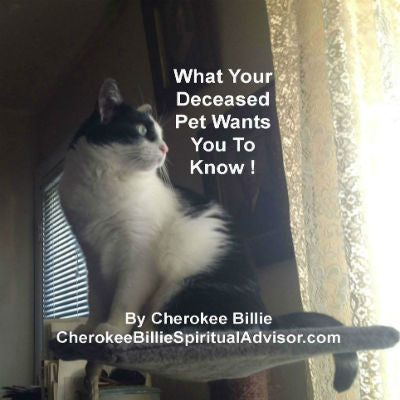 What Your Deceased Pet Wants You To Know After Life!