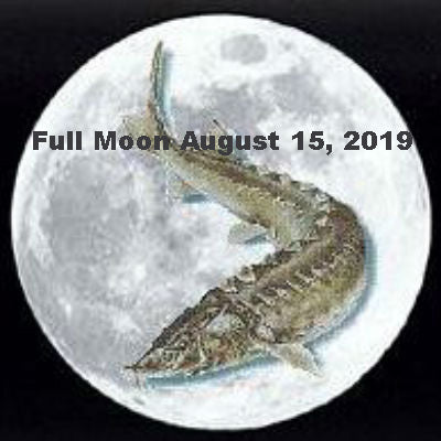 Full Moon August 15, 2019 in Aquarius