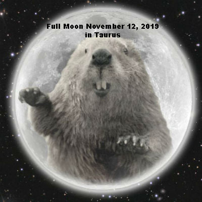 Full Moon November 12, 2019 in Taurus.  The Beaver Moon