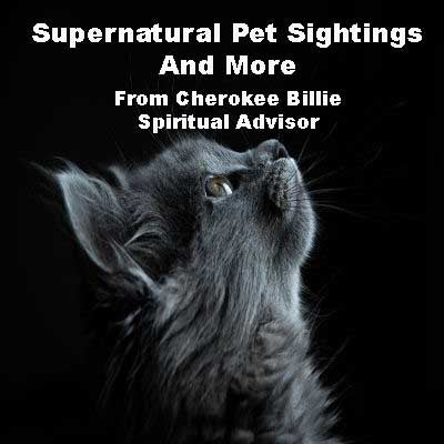 Supernatural Pet Sightings And More