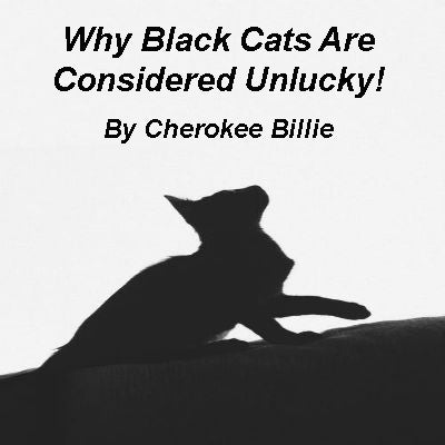 Why Black Cats Are Considered Unlucky!