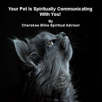 Your Pet Is Spiritually Communicating With You!