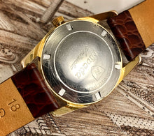GRIZZLY~MID 60s GOLD NIVADA ANARCTIC AQUADATIC