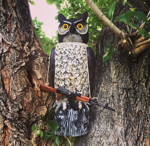 owl with miniature ak47 model
