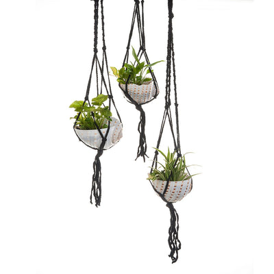 Macramé Shell Hanging Planter