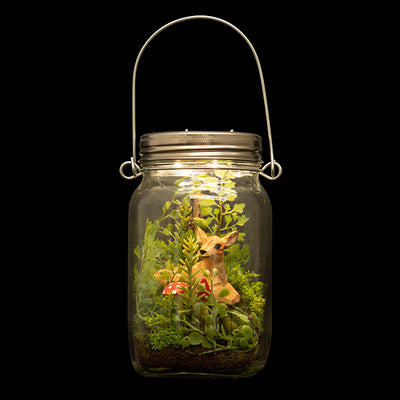 Woodland By Night Terrarium
