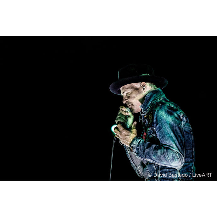 Gord Downie - The Stranger - Limited Edition Fine Art Print