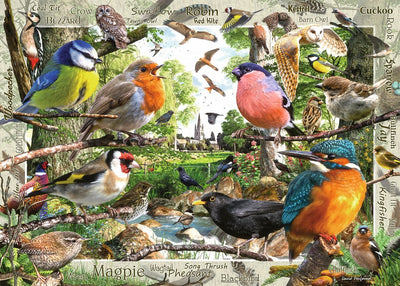 Ravensburger: Our Feathered Friends, 1000pc Jigsaw Puzzle