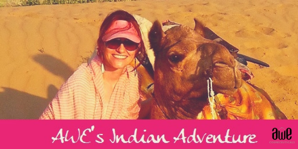 AWE's Indian Adventure