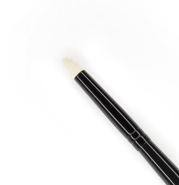 Expert Pencil Brush