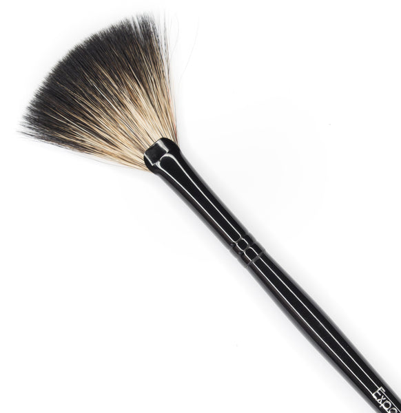 Expert Fan Brush