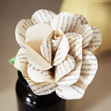 'Pride and Prejudice' Literary Rose