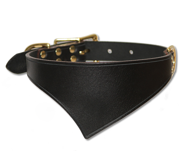 Shark Fin™ Collar,  Urban West Coast Style, Black with Brass