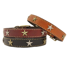 High Quality handmade leather dog collar adorned with brass stars, black, burgundy, tan