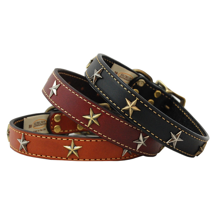 High Quality handmade leather dog collar adorned with brass stars