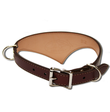 Shark Fin™ Collar, Trail Classic Style, Burgundy with Nickel Hardware