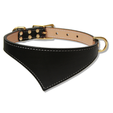 Shark Fin™ Collar, Trail Classic Style, Black with Brass Hardware