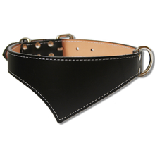 Shark Fin™ Collar, Trail Classic Style, Black with Nickel