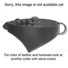 Shark Fin™ Collar, image not available