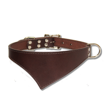 Shark Fin™ Collar, Urban Classic Style, Espresso with Nickel