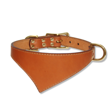 Shark Fin™ Urban Classic Collar