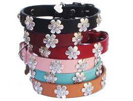 High Quality leather dog collar adorned with Swarovski  Crystal ornaments
