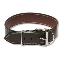 "Large Dog Urban Classic 2"" Wide Collar, Espresso Dark Brown"