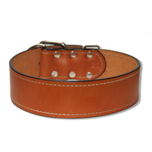 "Large Dog Urban Classic 2"" Wide Collar, Summer Tan"