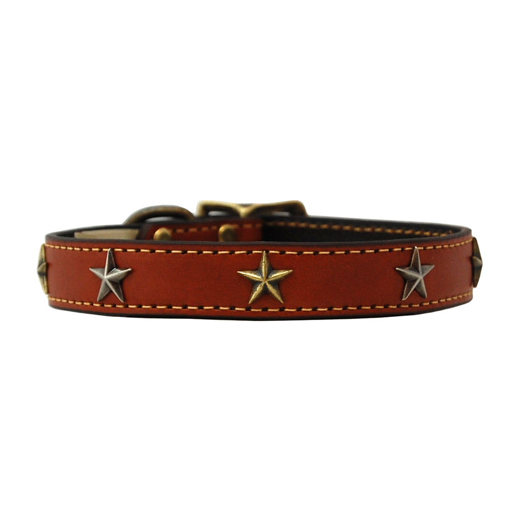 High Quality handmade leather dog collar adorned with brass stars, color tan