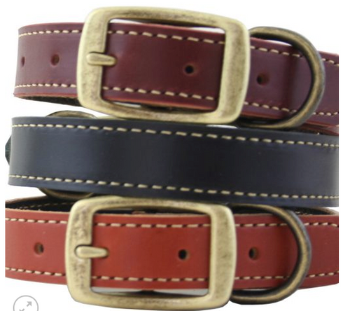 Leather dog collar handmade with antique brass hardware, color black, burgundy, tan