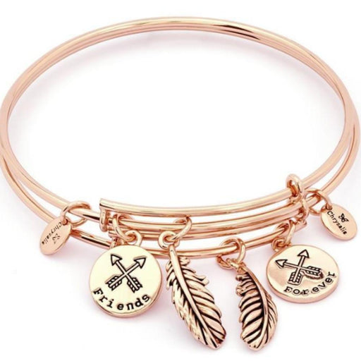 Chrysalis Bangle Chrysalis rose gold plate two of a kind forever friends bangle