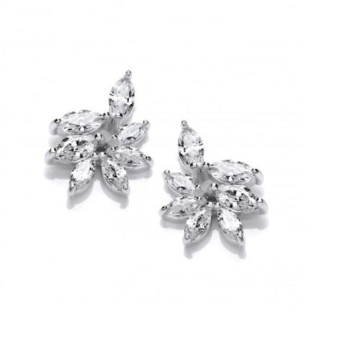 Earrings Silver cubic zirconia Iris stud earrings