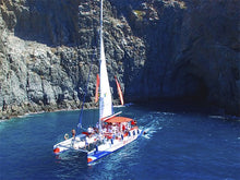 Large Catamaran Whale and Dolphin Excursion