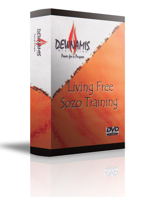 Sozo 6 DVD Video Teaching Series