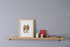 Picture Rail Shelves - Pedersen + Lennard