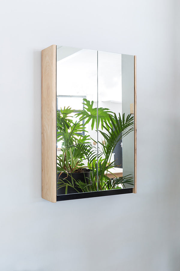 Bathroom Double Door Mirror Cabinet