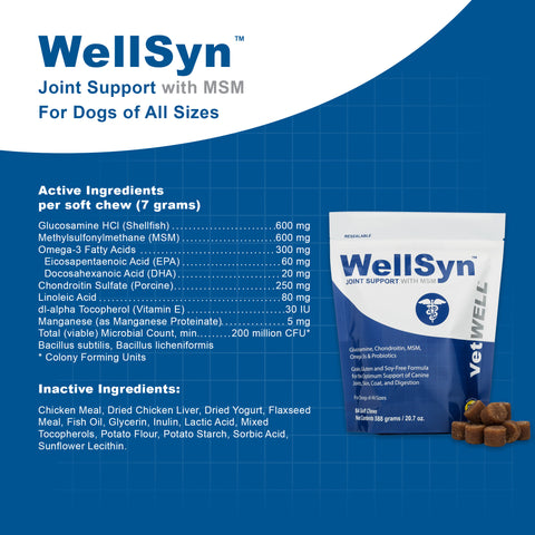 Image of WellSyn Joint Support for Dogs with MSM, Glucosamine, Chondroitin, Omegas, and Probiotics - 84ct