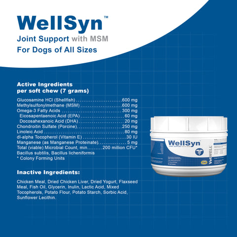 Image of WellSyn Joint Support for Dogs with MSM, Glucosamine, Chondroitin, Omegas, and Probiotics-60ct