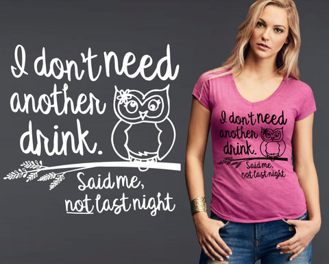I Don't Need Another Drink T-shirt | Funny T shirt