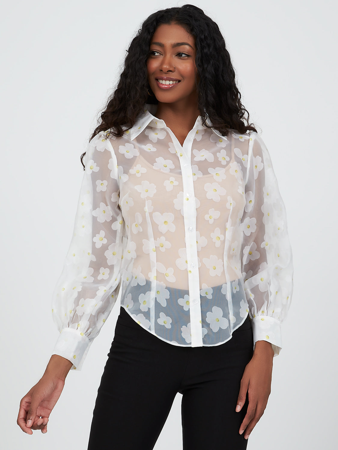 Organza Button-Down Shirt Collar Blouse