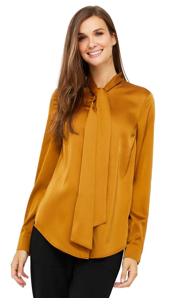 Long Sleeve Shawl Tie Collar Blouse