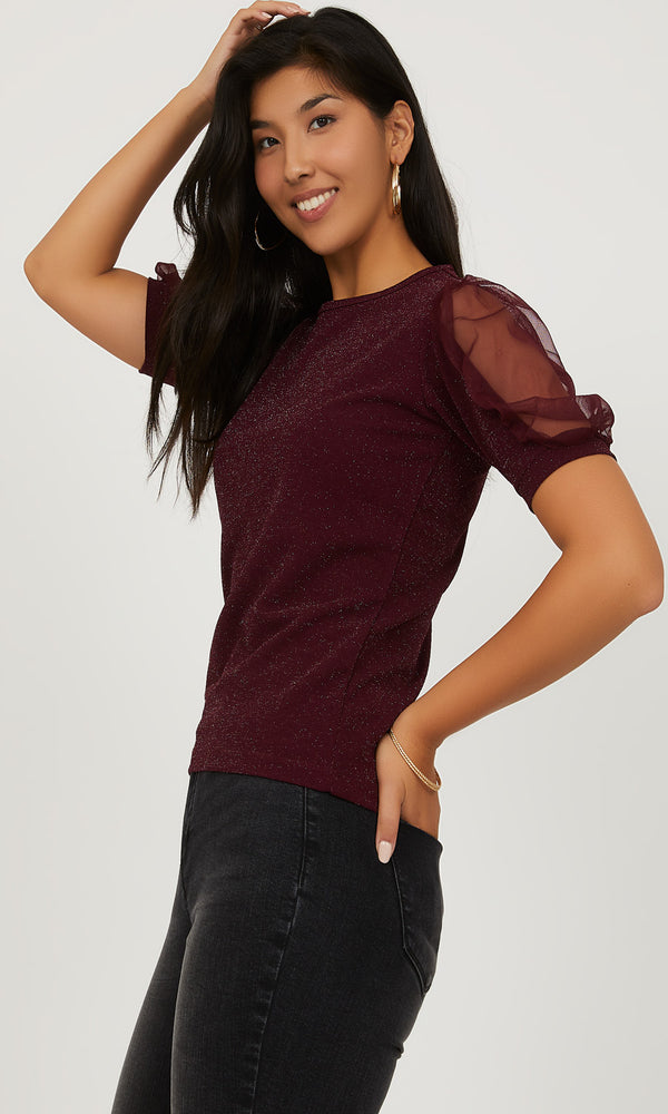 Puffy Mesh Sleeve Glitter Knit Top