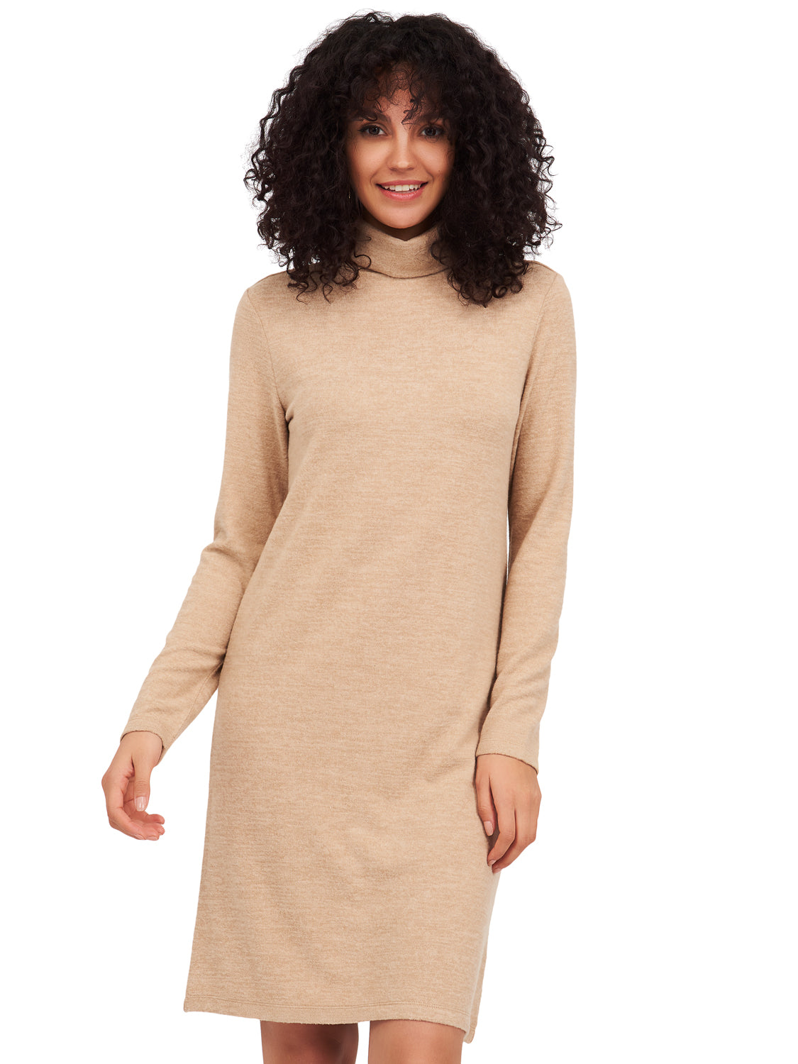 Long Sleeve Turtleneck A-Line Dress
