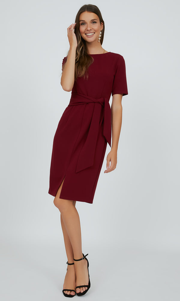 Sash Tie Sheath Dress