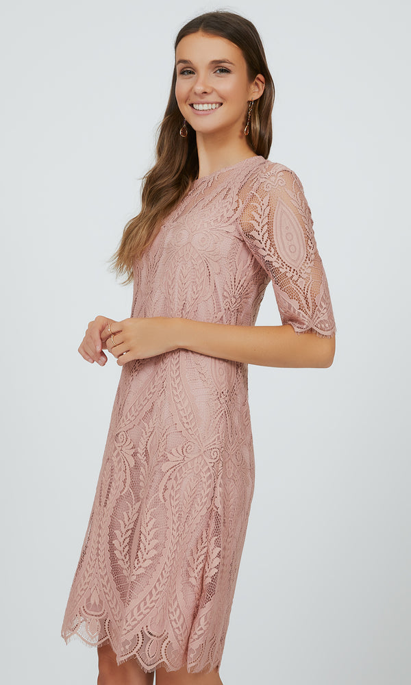 Dreamy Lace Elbow Sleeve Dress