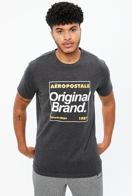 Aéropostale Original Brand Box Logo Graphic Tee