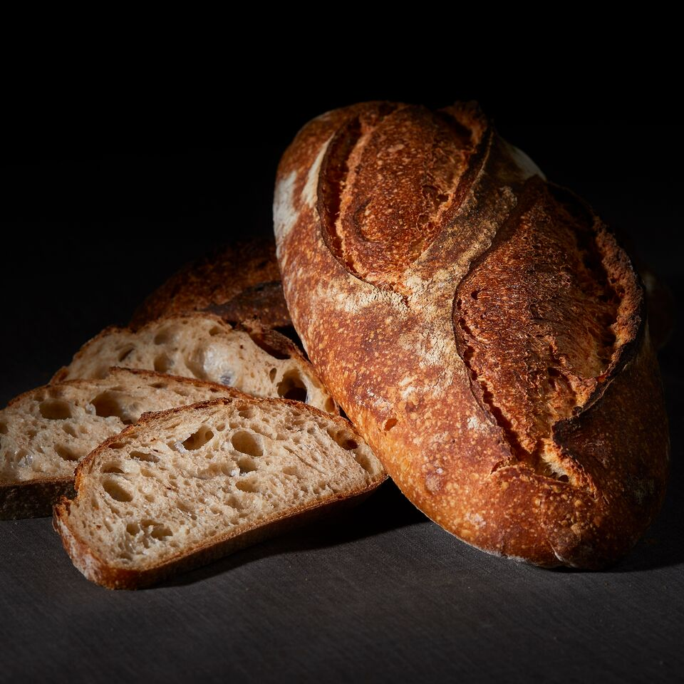 Sour Wheat Levain